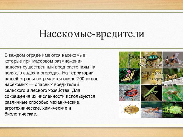 Насекомые-вредители В каждом отряде имеются насекомые, которые при массовом р...
