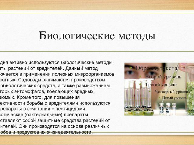 Биологические методы Сегодня активно используются биологические методы защиты...
