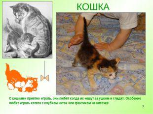 * КОШКА С кошками приятно играть, они любят когда их чешут за ушком и гладят.
