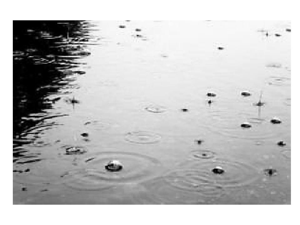 Ритм дождевых капель успокаивает или создает тревожное настроение.