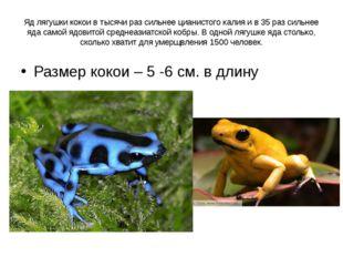 Яд лягушки кокои в тысячи раз сильнее цианистого калия и в 35 раз сильнее яда