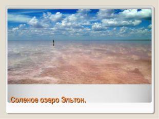 Соленое озеро Эльтон.