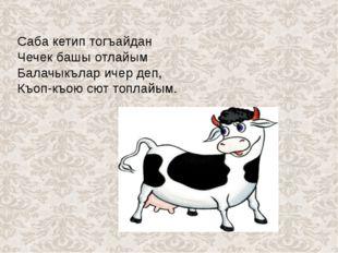 Саба кетип тогъайдан Чечек башы отлайым Балачыкълар ичер деп, Къоп-къою сют
