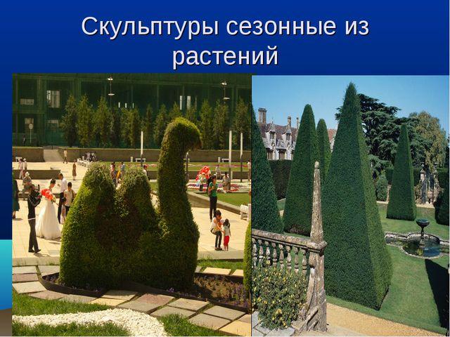 Скульптуры сезонные из растений
