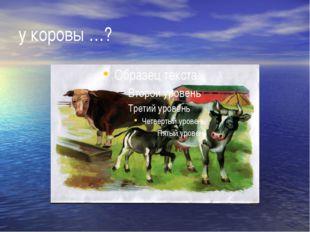 у коровы …?