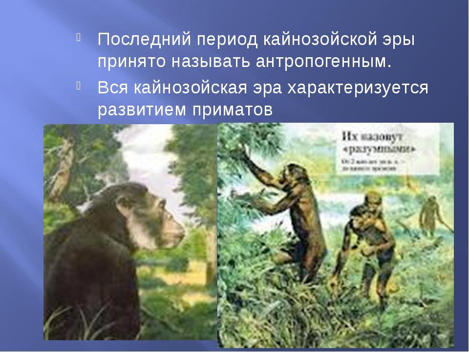 Последний период кайнозойской эры принято называть антропогенным. Вся кайнозо...