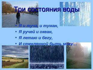Три состояния воды Я и туча, и туман, Я ручей и океан, Я летаю и бегу, И стек