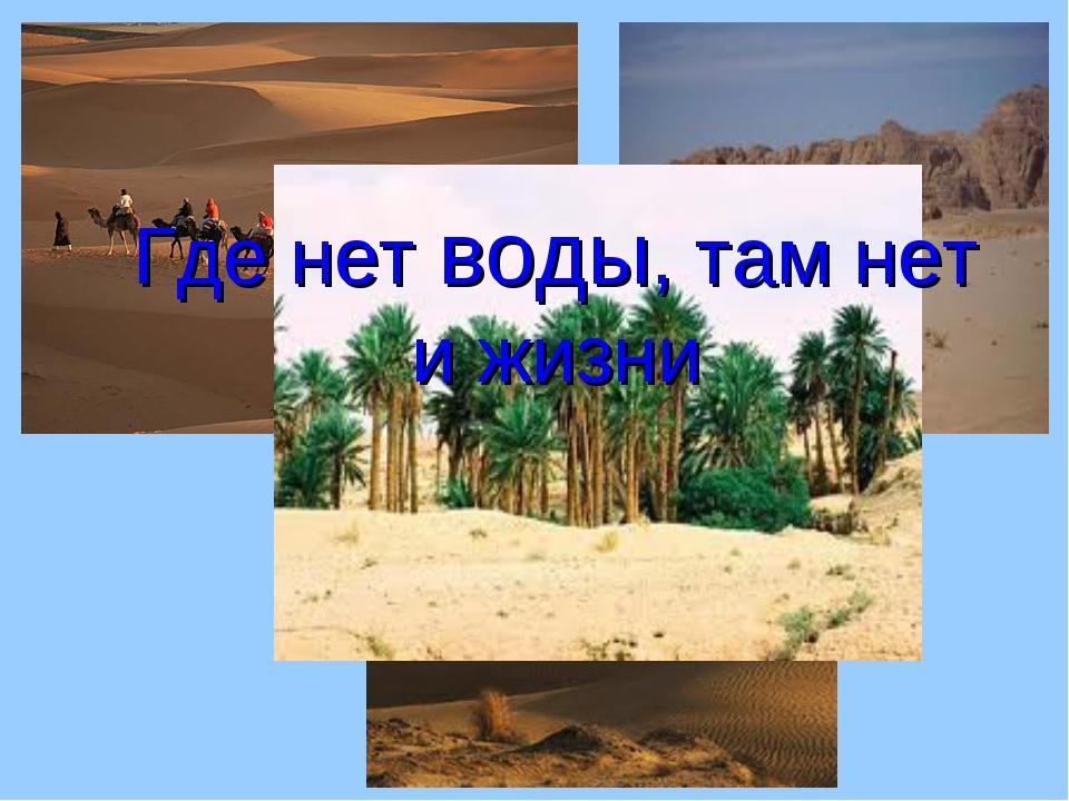 Где нет воды, там нет и жизни