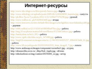 http://www.tdecologica.ru/files/porody/bereza.jpg - берёза Интернет-ресурсы h
