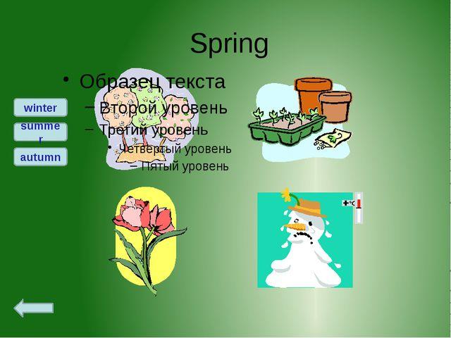 Spring winter summer autumn