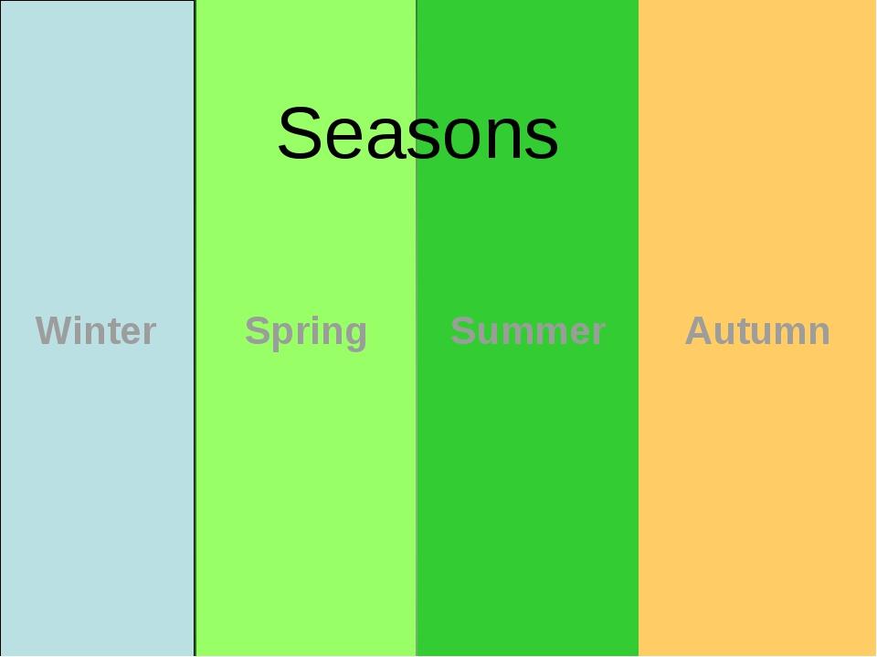 Winter Spring Summer Autumn Seasons