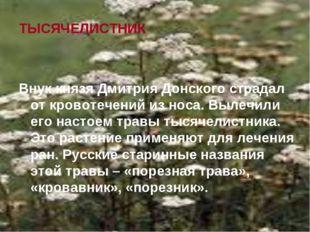ТЫСЯЧЕЛИСТНИК Внук князя Дмитрия Донского страдал от кровотечений из носа. Вы