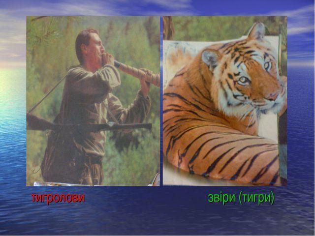 тигроловизвiри (тигри)