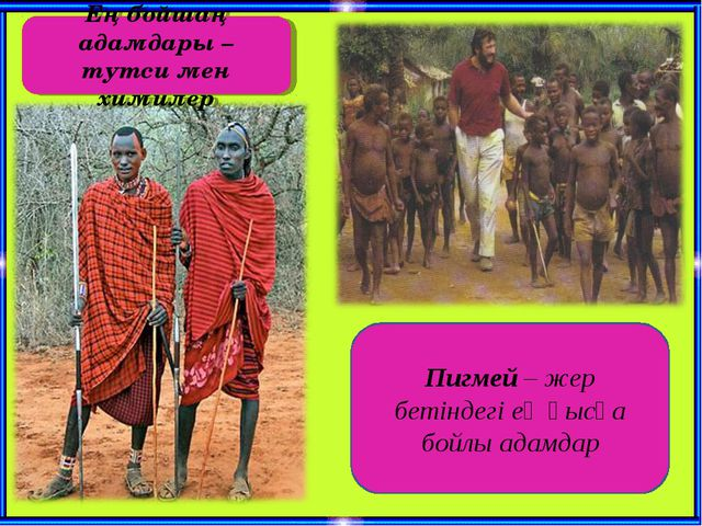 Пигмей – жер бетіндегі ең қысқа бойлы адамдар Ең бойшаң адамдары – тутси мен...