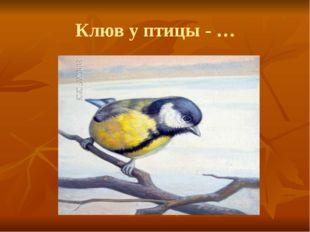 Клюв у птицы - …