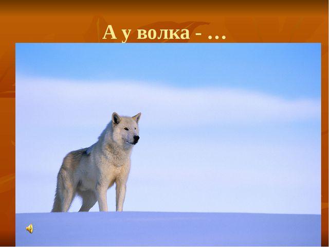 А у волка - …