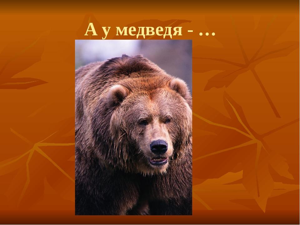 А у медведя - …