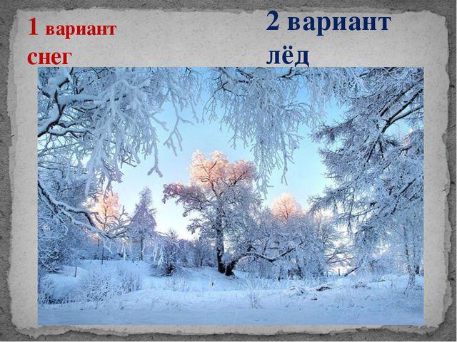 1 вариант снег 2 вариант лёд