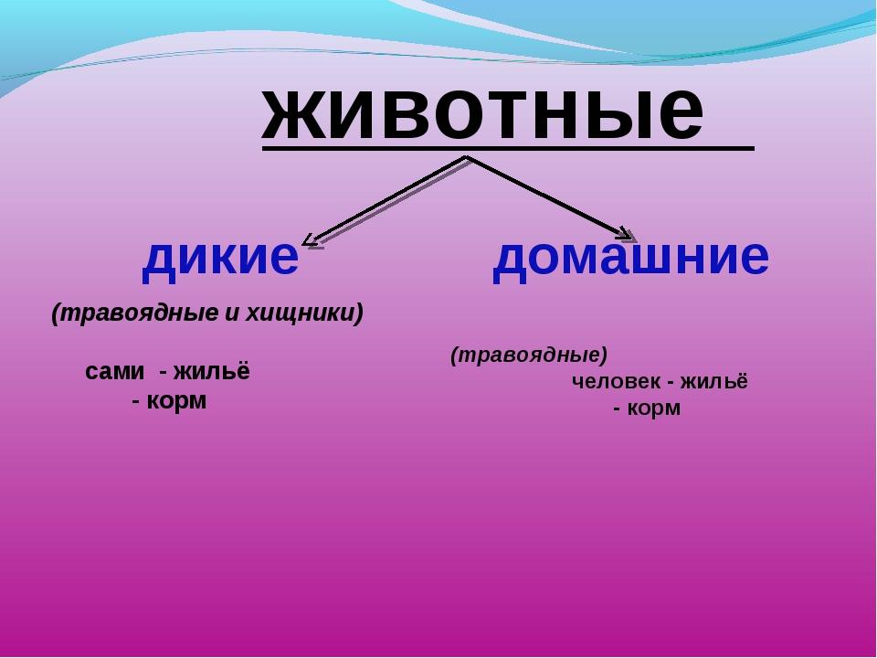 животные дикие домашние  (травоядные и хищники)  сами - жильё - корм (тр...