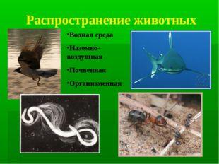 Распространение животных Водная среда Наземно-воздушная Почвенная Организменная