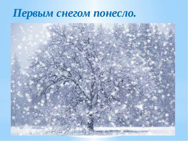 Первым снегом понесло.