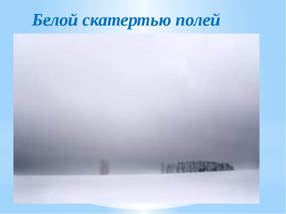 Белой скатертью полей