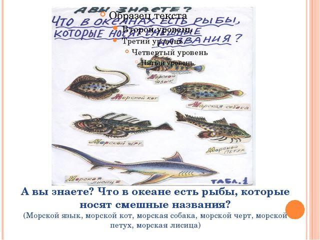А вы знаете? Что в океане есть рыбы, которые носят смешные названия? (Морской...