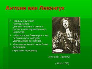 Антони ван Левенгук Первым научился изготавливать увеличительные стекла и дос