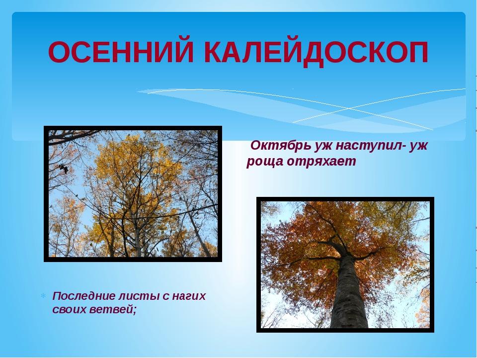 ОСЕННИЙ КАЛЕЙДОСКОП Последние листы с нагих своих ветвей; Октябрь уж наступил...