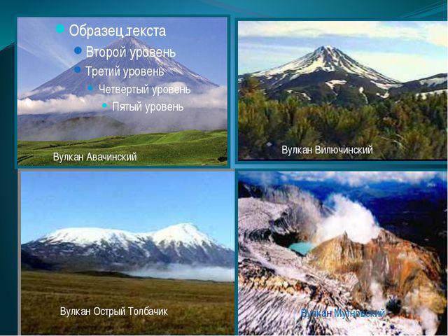 Вулкан Авачинский Вулкан Вилючинский Вулкан Острый Толбачик Вулкан Мутновский