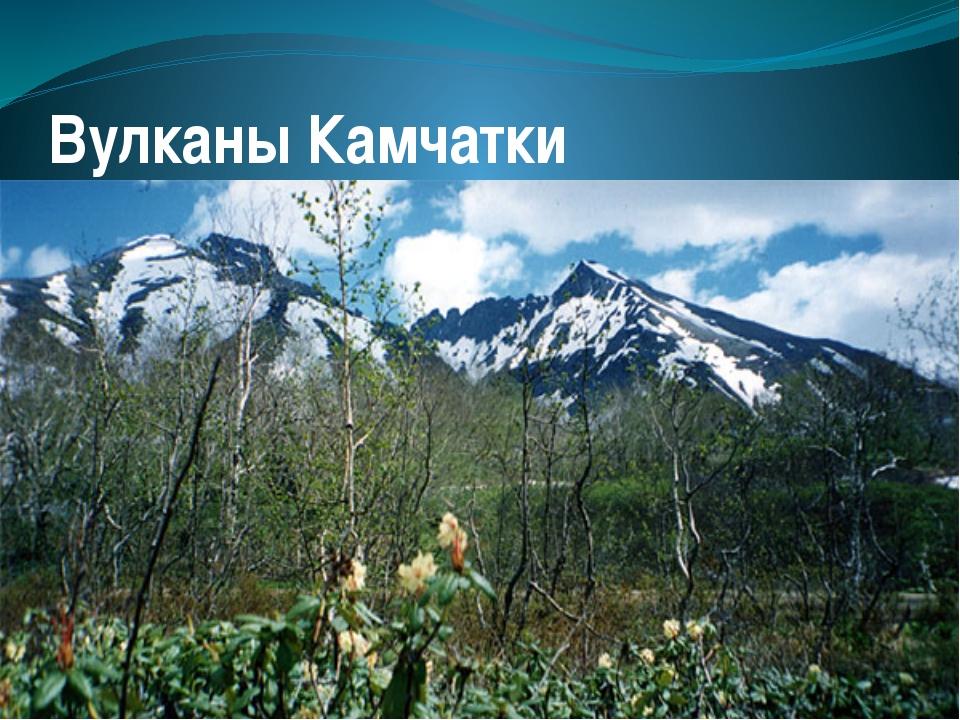 Вулканы Камчатки Текст надписи