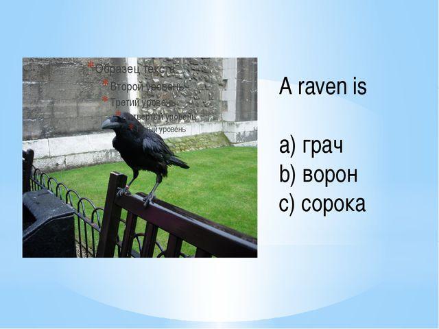 A raven is a) грач b) ворон c) сорока