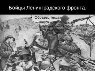 Бойцы Ленинградского фронта.