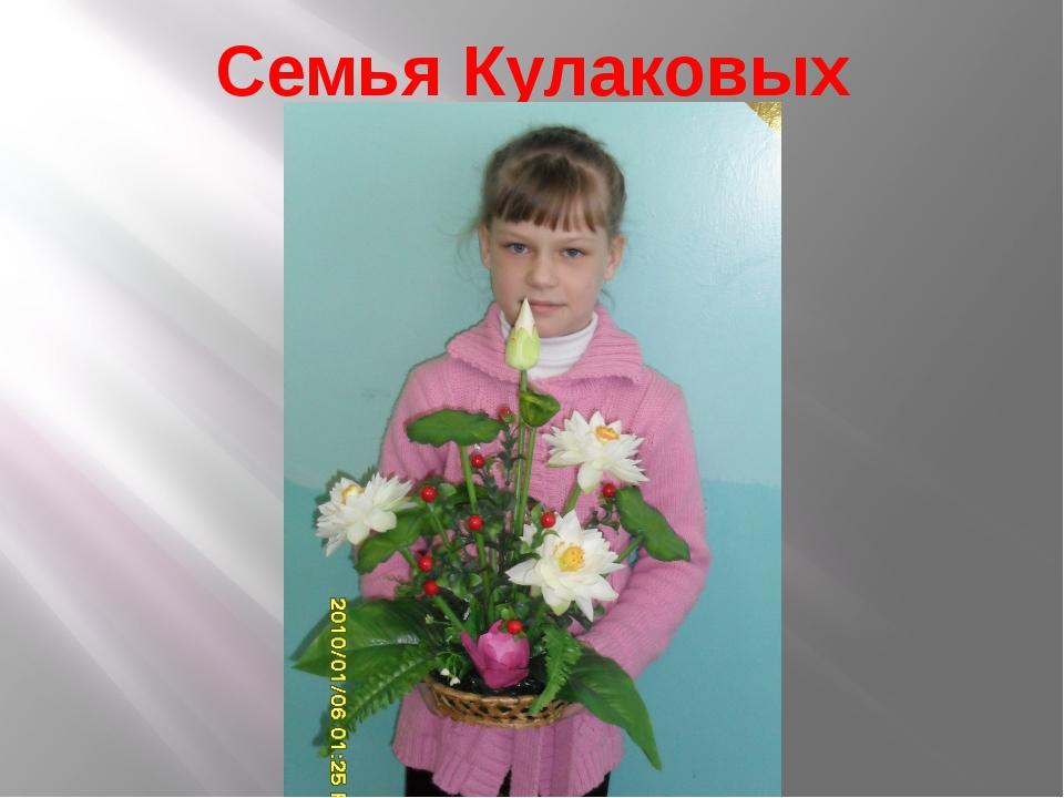 Семья Кулаковых