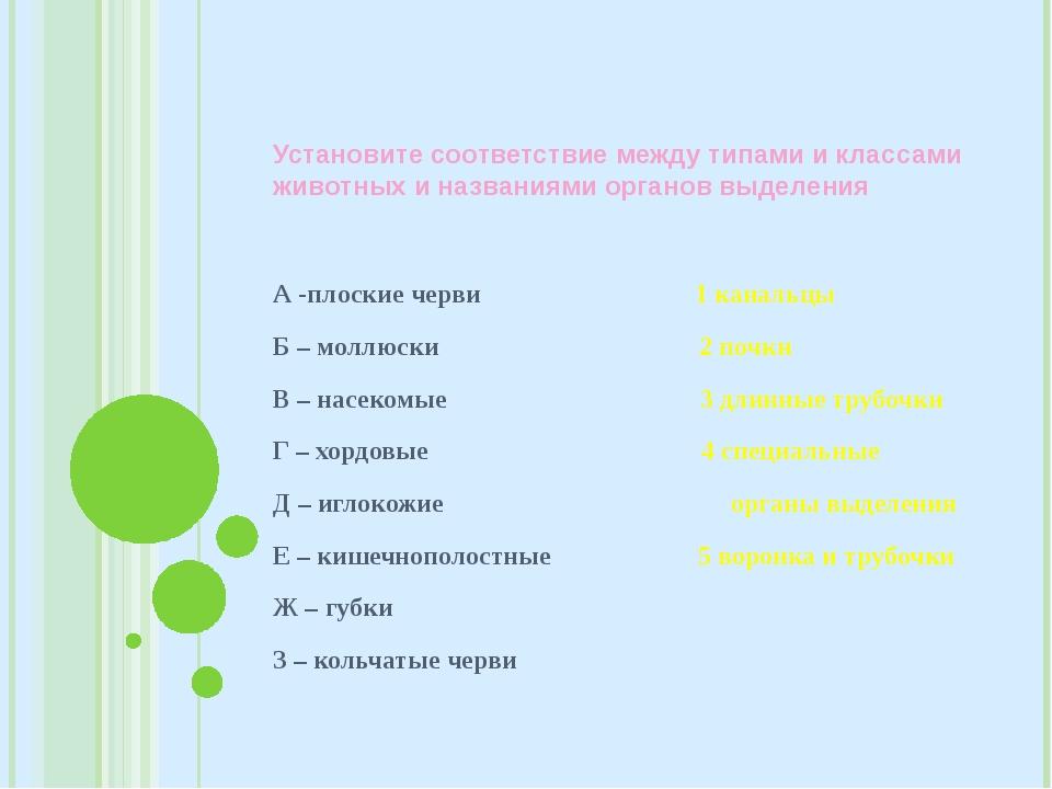 Установите соответствие между типами и классами животных и названиями органов...