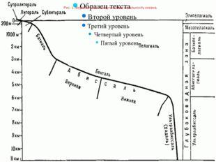 Рис.1.Вертикальнаяэкологическаязональностьокеана.