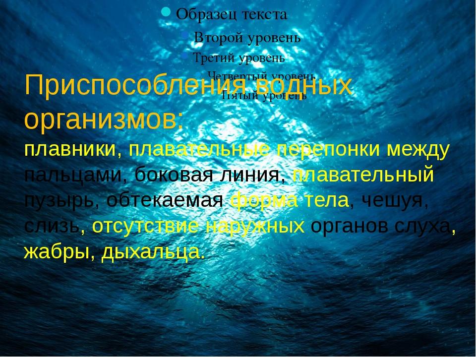 Приспособления водных организмов: плавники, плавательные перепонки между паль...