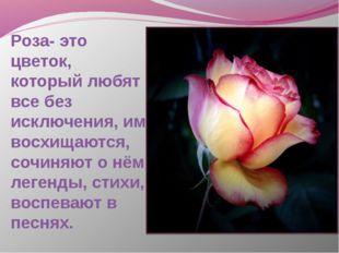 Роза- это цветок, который любят все без исключения, им восхищаются, сочиняют