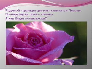 Родиной «царицы цветов» считается Персия. По-персидски роза – «гюль» А как бу