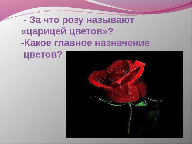 - За что розу называют «царицей цветов»? -Какое главное назначение цветов?