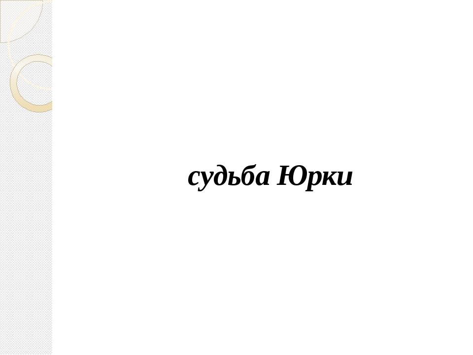 судьба Юрки