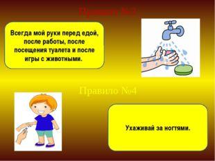 Правило №3 Всегда мой руки перед едой, после работы, после посещения туалета