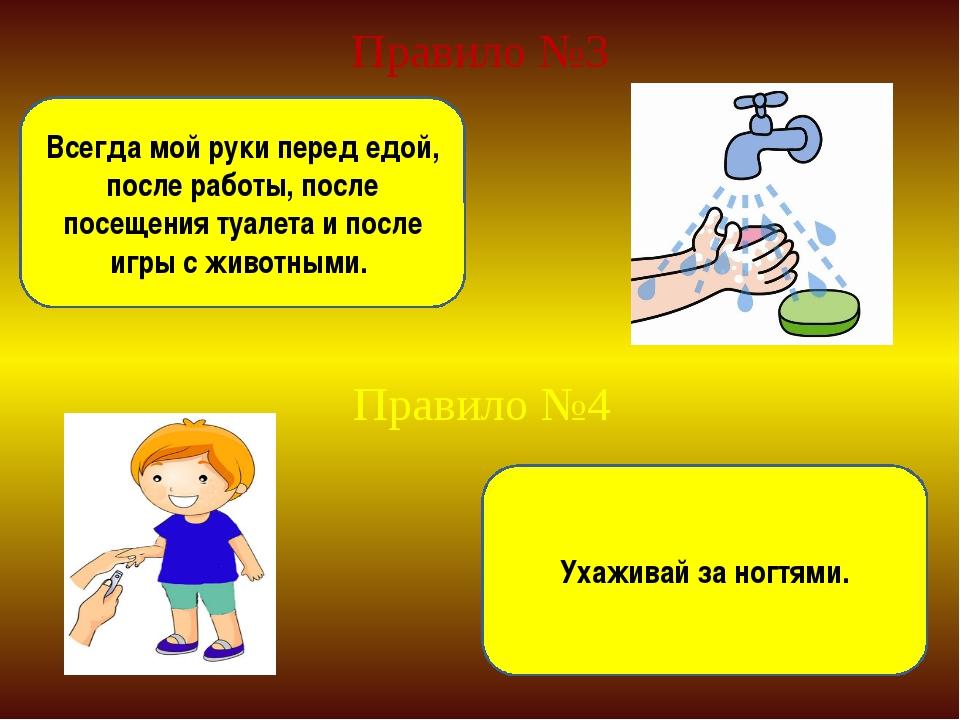 Правило №3 Всегда мой руки перед едой, после работы, после посещения туалета...