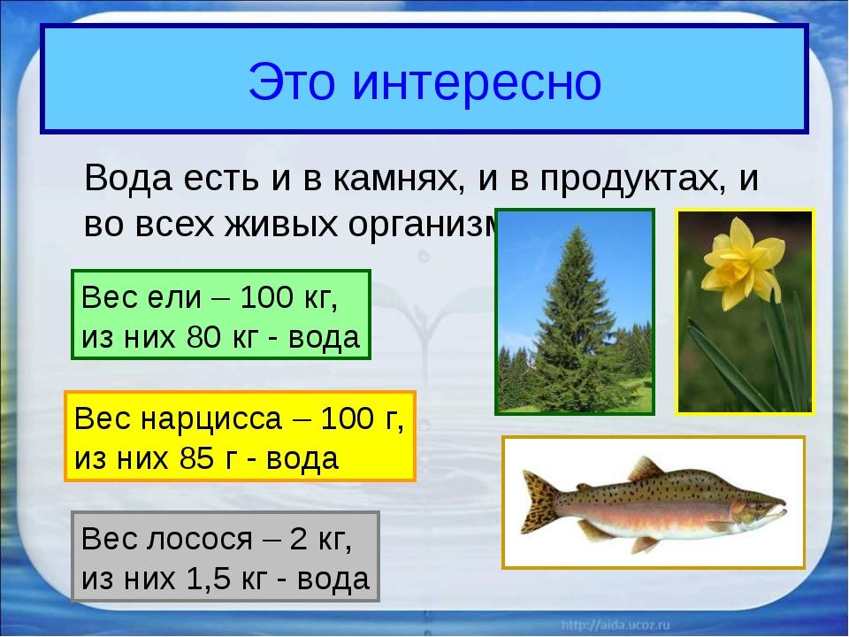 Это интересно Вода есть и в камнях, и в продуктах, и во всех живых организма...
