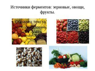 Источники ферментов: зерновые, овощи, фрукты.