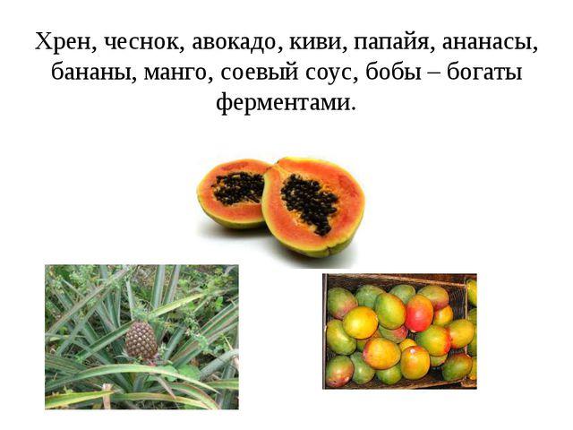 Хрен, чеснок, авокадо, киви, папайя, ананасы, бананы, манго, соевый соус, боб...