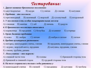 Тестирование: 1. Другое название брюхоногих моллюсков: А) двустворчатые В) ка
