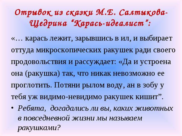 "Отрывок из сказки М.Е. Салтыкова-Щедрина ""Карась-идеалист"": «… карась лежит,..."
