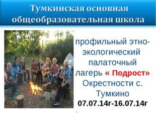 * профильный этно-экологический палаточный лагерь « Подрост» Окрестности с. Т