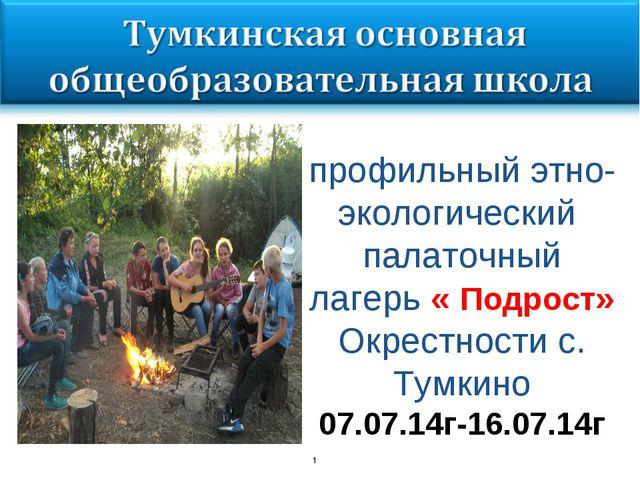 * профильный этно-экологический палаточный лагерь « Подрост» Окрестности с. Т...